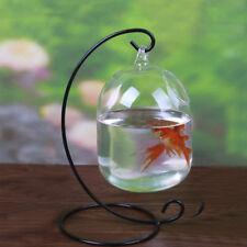 Clear Round Shape Hanging Glass Aquarium Fish Bowl Fish Tank Flower Plant Vase