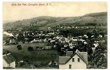 Livingston Manor NY - BIRDSEYE VIEW OF VILLAGE - Postcard
