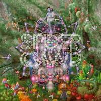 SPIDERGAWD - V (180 GR./BLACK VINYL+CD)   VINYL LP+CD NEW+