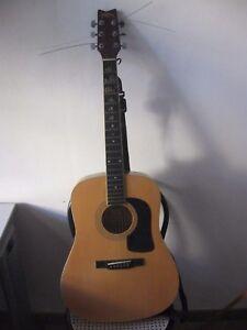 Chitarra acustica WASHBURN D8