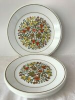 10 Vintage Corelle by Corning Indian Summer Lunch & Dinner Plates.