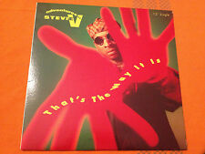 "ADVENTURES OF STEVIE V - That's The Way It Is - 1991 US 12"" Hip-House - NMINT"