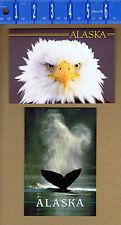 Bald Eagle & Humpback Whale - Alaska Wildlife Postcards
