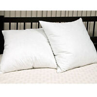 Luxurious 65cm x 65cm Euro Continental Square Pillow Pair