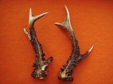 Pair Roe Art Design Decoration for Handle Decoration Jewelry Bullet Damage #2494