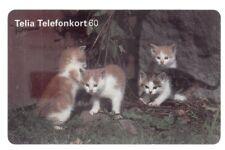 EUROPE  TELECARTE / PHONECARD .. SUEDE 60MK SO3 CHAT CAT 11/96 CHIP/PUCE