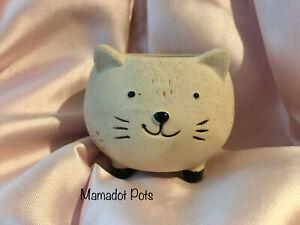 Cat Porcelain Pot