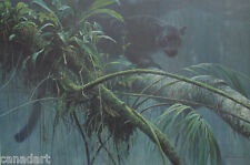 Robert BATEMAN Shadow of the Rainforest Black Panther Canvas art MINT stretched