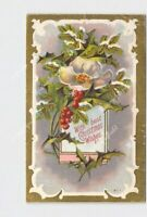 PPC POSTCARD BEST CHRISTMAS WISHES HOLLY SNOW COVERED PINE BOUGH FLOWER EMBOSSED
