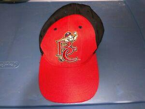 BREVARD COUNTY MANATEES Baseball Team Minor League Hat Cap