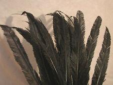 "Vintage Antique Edwardian Feathers Trimmed Ostrich Lot 20 Millinery Black 22"""