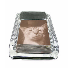 "Vintage Cat D8 Glass Ashtray 4""x3"" Old Fashioned Classic Retro Image Cute Funny"