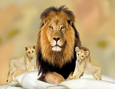 METAL REFRIGERATOR MAGNET Male Lion Two Babies Cat Lions Cats