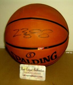 LEBRON JAMES AUTOGRAPHED BASKETBALL  LAKERS HAND SIGNED W/COA RED CARPET