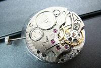 17 Jewels ST3621 6498 Mechanical Wristwatch Movement Hand Winding Watch