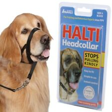 Halti Head Collar (S (1)) Dog Dogs Pet Pets