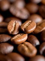 Colombian DECAF Coffee Fresh Roasted Coffee - 12 oz Bag ,  Med. Roast Whole Bean