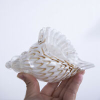H&D 3D Hand Blown Glass Murano Art Seashell Conch Sculpture Crystal Figurines