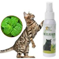 Cat Catnip Pet TrainingToy Natural Healthy Cat Mint Spray 50MLGift Scratch J7W4