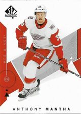 Detroit Red Wings - 2018-19 SP Authentic - Complete Base Set Team (2)
