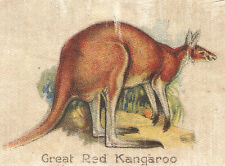 Vintage tobacco cigarette silk card - Birds & Animals Of Australia, Kangaroo #1