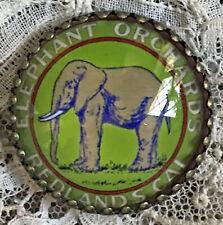 "ELEPHANT ORCHARDS  Glass Dome BUTTON 1 1/4"" Vintage REDLANDS CA Label ART"