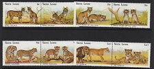 Cats Sierra Leonean Stamps (1961-Now)