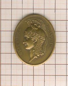 superbe insigne par Duvivier conseil d'état  (modèle an VIII )