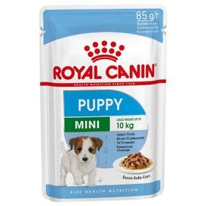 Royal Mini Puppy [Croquettes / Wet Puppies Up 10kg Up 10mesi] Ex Junior