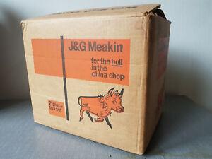 Vintage J&G Meakin Lifestyle Wayside Tea Set 21 Pieces Boxed Unused!