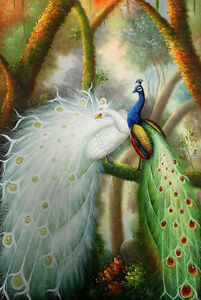 """Two Peacock Handmade Oil painting wall art on canvas 24""""x36"""" inches M2"""