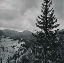 COL DE LA FAUCILLE c. 1950 -  Panorama Jura  - DIV8913