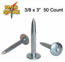 ChrisNik Mag Spike 3/8 x 3 Inch Survey Nail 50 Count