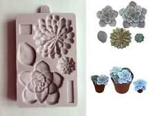 Karen Davies Succulent Sugarcraft Mould   3 different flowers  NEW DESIGN