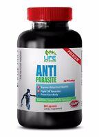 immune support tincture - ANTI PARASITE COMPLEX - black walnut hull - 1 Bottle