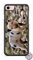 Small Pig Piglet Farm Animal Phone Case for iPhone X 8 PLUS Samsung 9 LG G7 etc