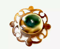 Antique Faux Tortoise Shell Operculum Eye Brooch GIFT BOXED