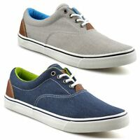 Mens Casual Flat Lace Up Canvas Skate Pumps Walking Plimsolls Trainers Shoe Size