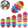 2017 Colorful Rubber Pet Dog Puppy Dental Teething Healthy Gums Chew Play Toys