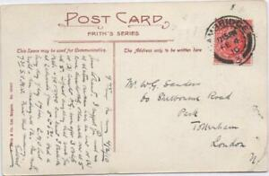 Genealogy Mr W G Sanders 60 Sherbourne Road PARK Tottenham 1910 PM Cambridge P.C
