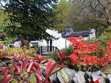 4* Holiday Cottage Lake District Ambleside Sleeps 2 Self Catering Xmas  New Year