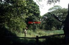PHOTO  CORNWALL BED OF FORMER BUDE CANAL CANN ORCHARD 1976