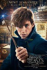 Fantastic Beasts And Where To Find Them Movie Poster (24x36) - Newt Scamander v8