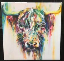 "Large Colourful Long Haired Highland Cow wall art printed on canvas 22"" X 22"""