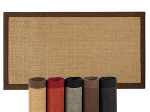 100 % reiner Sisal Teppich Amazonas mit Bordüre in verschiedenen Farben/Größen