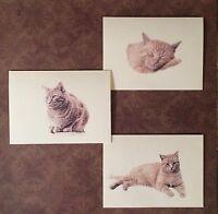 Set of 12 Handmade Blank Orange Tabby Cat Print Note Cards