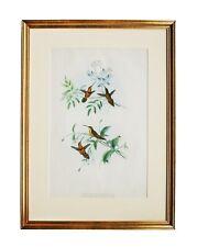 John Gould ORIGINAL Hand Colored Lithograph, Hummingbirds