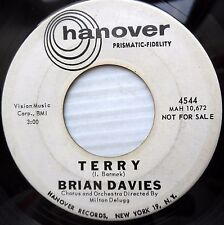 BRIAN DAVIES rock promo 45 TERRY b/w THE THINGS I MUSTN'T DO Hanover     dm405