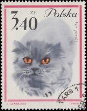 POLOGNE / POLAND - 1964 - Mi.1483 3,40Zl PERSIAN CAT - Used (C.T.O.)