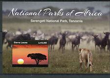 Sierra Leone 2015 MNH National Parks of Africa Serengeti Tanzania 1v S/S I Lions